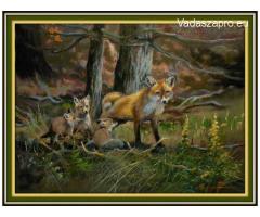 róka  család