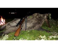 Dél-zalai Vadásztársaság éjszakai vaddisznólessel kombinált őzbak vadászatot ajánl kedvező áron.